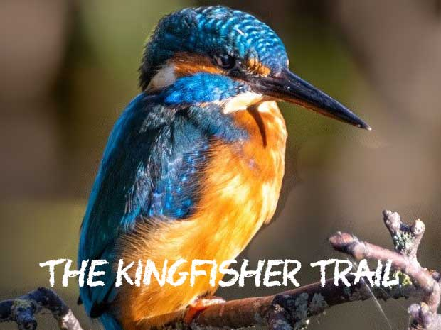 The Kingfisher Trail